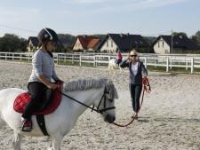 W Radzionkowie organizowane są darmowe przejażdżki na kucykach (fot. Riding Club)