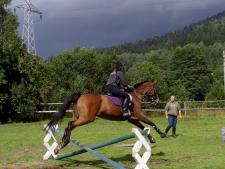 W Ośrodku Górskiej Turystyki Jeździeckiej przy hotelu Stara Szmergielnia można pojeździć konno (fot. mat. OGTJ w Bielsku-Białej)