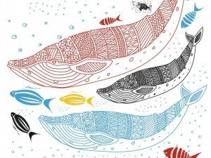 II Rybnicka Parada Ryb odbędzie się 9 września (fot. mat. organizatora)