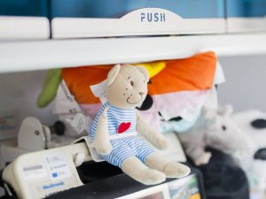 Pluszaki spełniają ważną rolę terapeutyczną (fot. mat. organizatora)