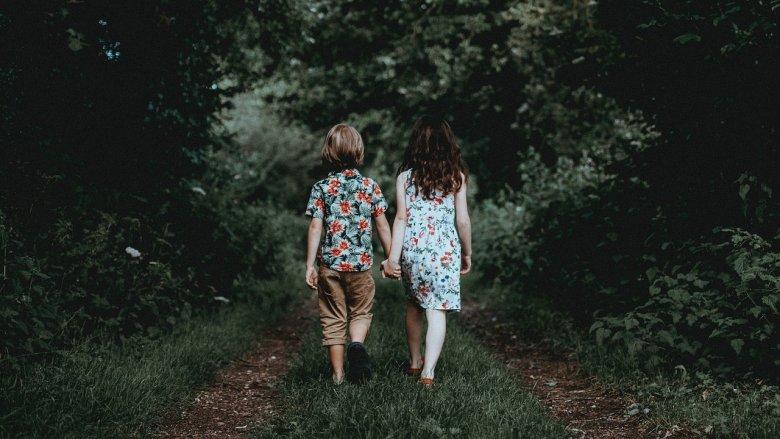 Jak człowiek wpływa na las? To pytanie zadadzą sobie dzieci w Muzeum Górnośląskim (fot. pixabay)