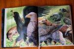 Dotychczas ukazały się trzy tomy edycji ilustrowanej przygód Harry'ego Potter (fot. Ewelina Zielińska)