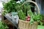 W każdą środę (a od września również sobotę) można zrobić ekologiczne zakupy mailowo lub telefonicznie (fot. mat. BioBazaru)