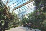 W Palmiarni znajdą się eksponaty roślinne, wśród nich znajdzie się miejsce dla zwierząt (fot. mat. UM Sosnowiec)