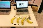 Na stoisku Gigantów Programowania zamiast myszek były banany (fot. SilesiaDzieci.pl)