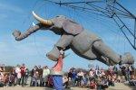 Słoń i ekscentrycy też zawitają na Industriadę (fot. materiały organizatorów)