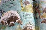 Opisane w książce zwierzęta dobrane są dość chaotycznie, co dla jednych może być wadą, a dla innych zaletą (fot. Ewelina Zielińska/SilesiaDzieci.pl)