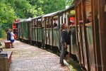 Przejażdżka odbywa się w otwartych, zadaszonych wagonikach (fot. mat FB SGKW Bytom)