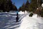 W poszukiwaniu śniegu wybraliśmy się w Beskidy (fot. Agnieszka Mróz/SilesiaDzieci.pl)