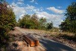 Żabie Doły to piękne miejsce, w którym można spotkać około 129 gatunków ptaków, w tym 76 gatunków lęgowych (fot. UM Bytom)