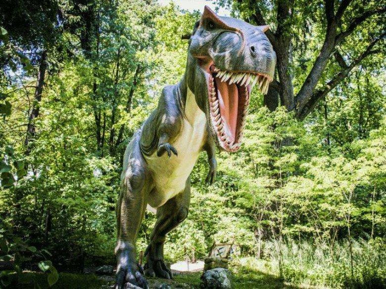 Zatorland to nie tylko Park Dinozaurów, ale też m.in. Park Mitologii, Owadów i lunapark (fot. mat. Zatorland)