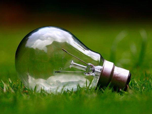 Podczas Dni Energii będzie można dowiedzieć się m.in. jak dbać o klimat (fot. mat. pixabay)