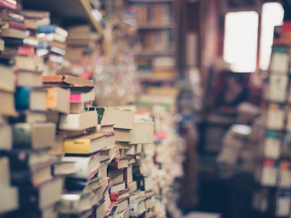 Miłośnicy książek lubią od czasu do czasu wymienić stare tytuły na nowe (fot. pixabay)