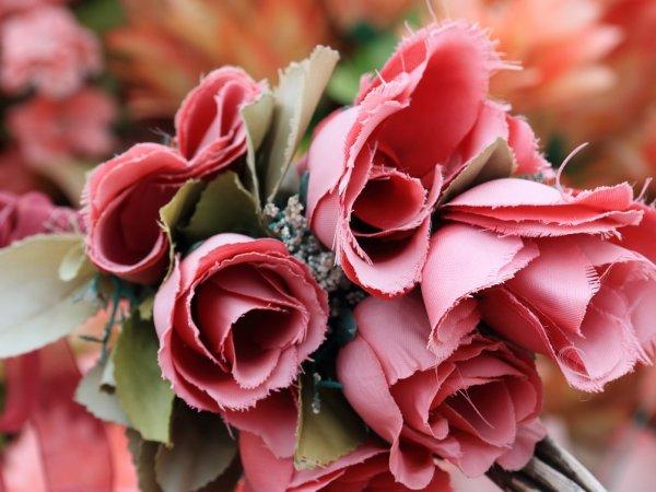 """""""Nie wszystkie kwiaty są sztuczne"""" to cykl warsztatów w CSW Kronika (fot. pixabay)"""