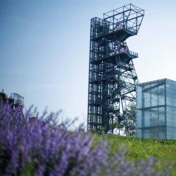 Muzeum Śląskie planuje m. in. otwarcie wystawy edukacyjnej o Tomku Alfreda Szkalrskiego (fot. FB Muzeum Śląskie)