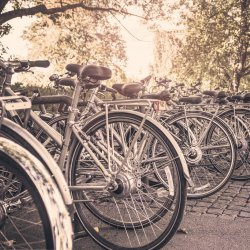 """""""RoweLOVE Tychy"""" to impreza dla wszystkich miłośników rowerów (fot. foter.com)"""