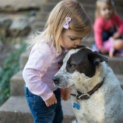 Jak przygotować dziecko na śmierć ukochanego pupila radzi psycholog Sylwia Błach (fot. foter.com)