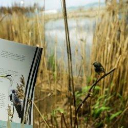 """Fragment książki """"W świecie przyrody"""" (fot. Witalis Szołtys)"""