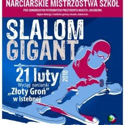 21 lutego uczniowie z Jaworzna zmierzą się w slalomie gigancie (fot. mat. organizatora)