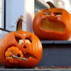 Dzień Dyni to zabawa dla całych rodzin organizowana w Mamince (fot.foter.com)