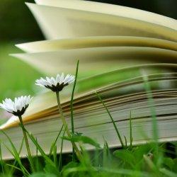 """Wspólne czytanie """"Wesela"""" odbędzie się m.in. w Parku Kościuszki w Katowicach (fot. pixabay)"""