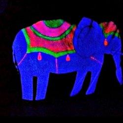 Słoń, tresowane zwierzaki i klaun to cyrkowe atrakcje, które zobaczycie w Teatrze Czarnego Tła (fot. mat. Teatr Czarnego Tła))