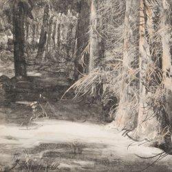 Leon Wyczółkowski, Wnętrze parku w Gościeradzu, 1927 (grafika ze zbiorów Muzeum Górnośląskiego)