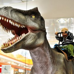 Zobaczyć dinozaury z bliska to duża atrakcja (fot. materiały SCC)