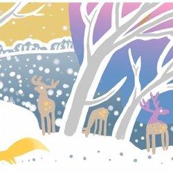W Śląskim Ogrodzie Botanicznym w Mikołowie przygotowano 1 grudniawiele atrakcji (fot. mat. organizatora)