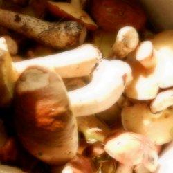 Dzieciom do 10-12 roku życia nie powinno podawać się grzybów (fot. alex)