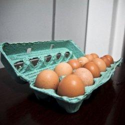 Z jaj można przygotować wiele smacznych, zdrowych i pożywnych dań (fot. foter.com)