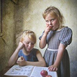 O śląskiej kuchni dowiedzą się dzieci na zajęciach w Muzeum Śląskim (fot. pixabay)