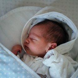 Aż 32 tys. rodzin zarejestrowało narodziny dzieci online (fot. pexels)