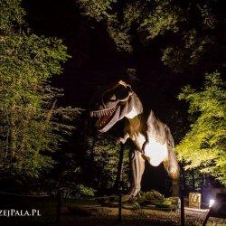 Przez kilka dni sierpnia Park Ruchomych Dinozaurów i Lunapark będą czynne do godz. 23 (fot. mat. Zatorlandu)