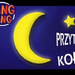 To już 8 singiel dla najmłodszych projektu Sing Sing (fot. mat. organizatora)
