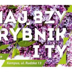 Rybnicka majówka będzie prawdziwym świętem dla ciała i dla ducha (fot. mat. organizatora)