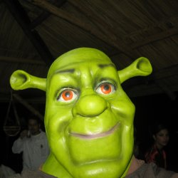 Shrek jest uwielbianą przez dzieci postacią z bajki. Dlatego może przekonać do zjedzenia zielonej zupy (fot. sxc.hu)