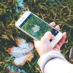 Zwiedzanie z wirtualnym przewodnikiem to sposób na urozmaicenie spacerów po chorzowskim skansenie (fot. pixabay)