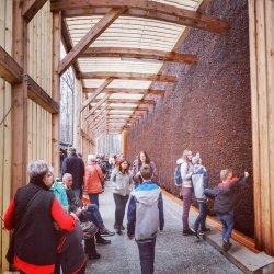 Tężnia wykonana jest z drewna modrzewiowego (fot. mat. UM Katowice)
