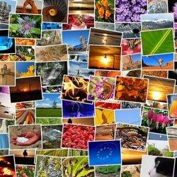 Wspomnienia z wakacji można zamknąć w ozdobnym albumie (fot. pixabay)