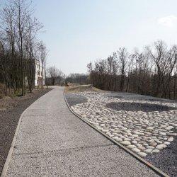 Żelazny Szlak Rowerowy to pętla poprowadzona na pograniczu polsko-czeskim (fot. UM Jastrzębie Zdrój)