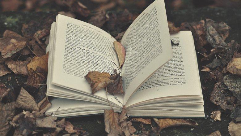 Warto przywitać jesień z nowymi książkami, które możecie zdobyć na II Gliwickiej Wymianie Książkowej (fot. foter.com)