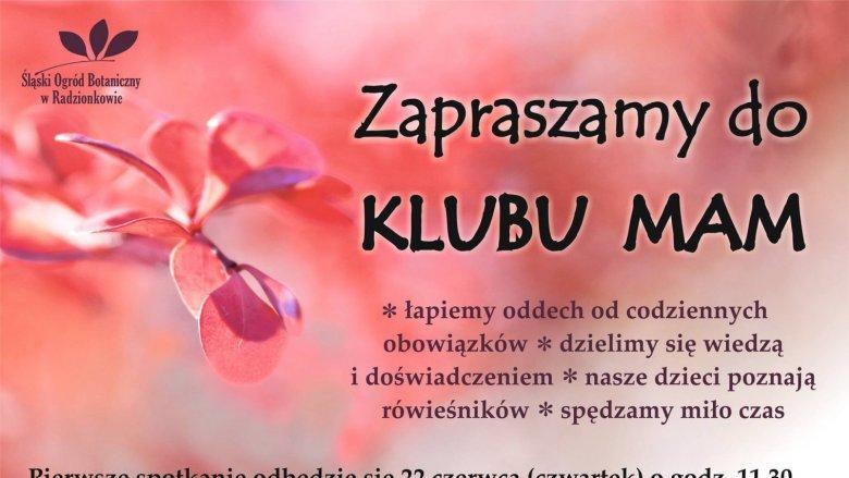 Pierwsze spotkanie Klubu Mam zaplanowano na 22 czerwca (fot. mat. organizatora)