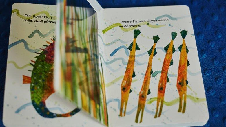 """Konik morski"" to kolejka książka kultowego autora Erica Carle'a  (fot. Ewelina Zielińska)"