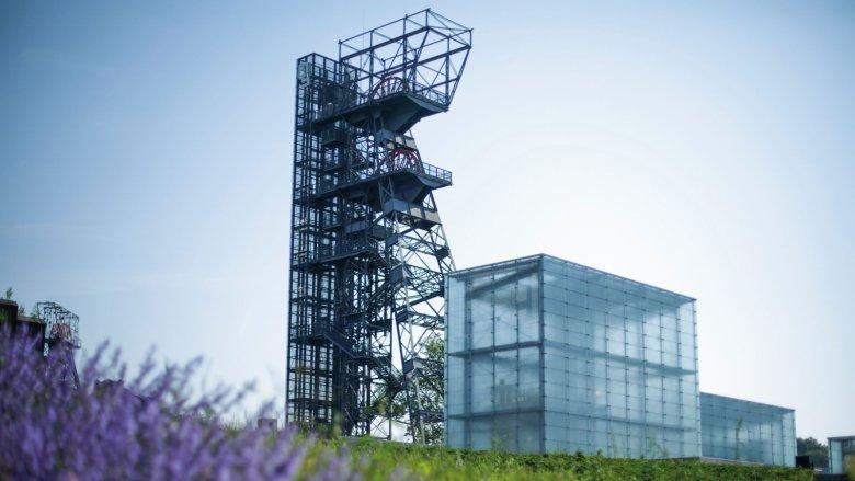 Zniżkowa oferta czeka na zwiedzających przez cały weekend (fot. Muzeum Śląskie)