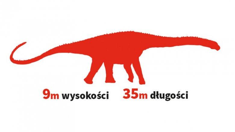 Argentynozaur cechował się długą szyją, którą potrafił sięgać na wysokość 5. piętra (fot. mat. Parku Zatorland)
