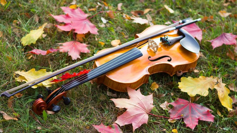 """Muzyka ma wyjątkowy wpływ na rozwój maluchów - wiedzą to prowadzący spotkania """"Maluch i muzyka"""" (fot. pixabay)"""