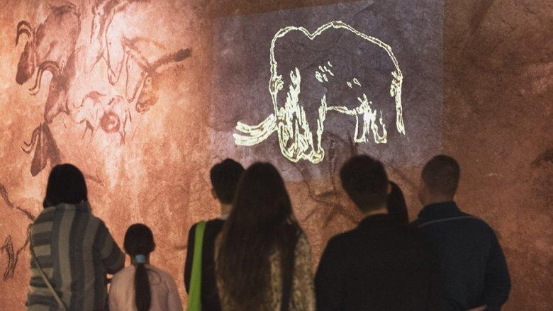 """Warsztaty towarzyszą wystawie """"Bliskie, lecz z dalekiego świata. Historia udomowienia ssaków"""" (fot. mat. Muzeum Śląskiego)"""
