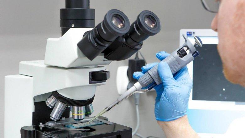 Katowicka Klinika Leczenia Niepłodności i Diagnostyki Prenatalnej Gyncentrum jako pierwsza w Polsce zastosowała odkrycie hiszpańskich naukowców (fot. Gyncentrum)