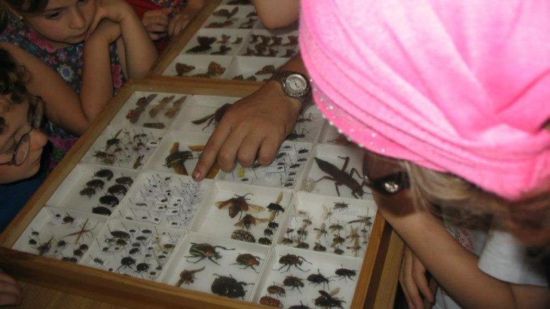 Na Uniwersytecie Rozwoju dzieci poznają fascynujący świat nauki. (fot. archiwum UR)